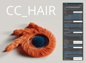 CC_Hair