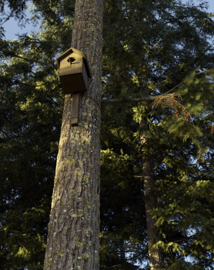 carl-roe-birdhouse3