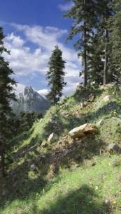 carl-roe-ridge