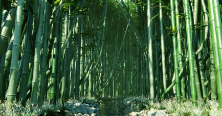 bamboo_forest_00