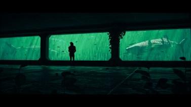 The Aquarium by M. Rijs