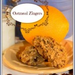 Oatmeal Zingers