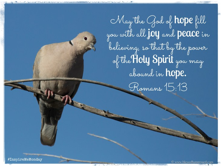 Holy Spirit Peace