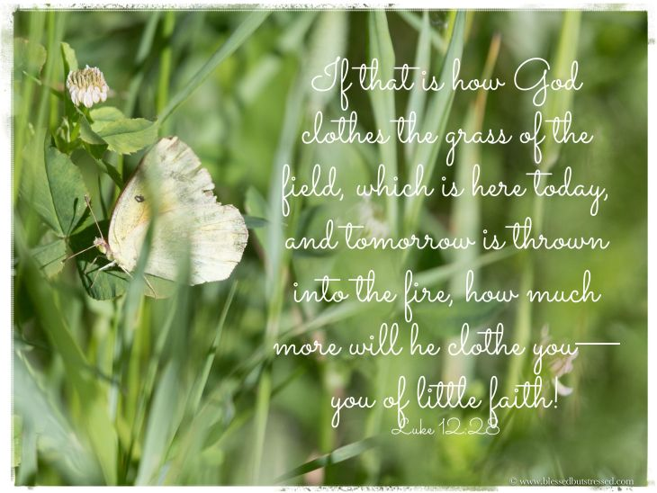 Luke 28:12