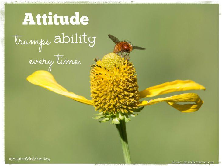 Attitude trumps ability every time.