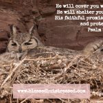 A Caregiver Looks at Psalm 91