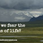 Are You Willing to Let God be Sovereign in the Situation?