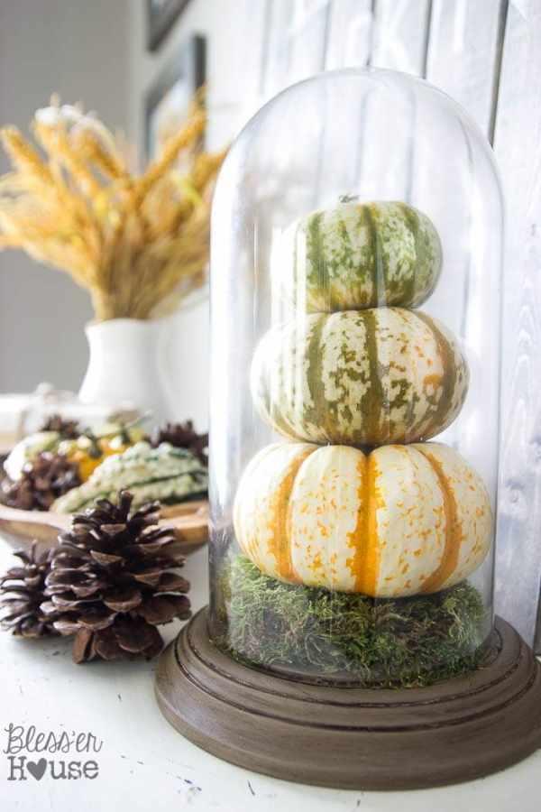 DIY Pumpkin Terrarium from a Thrifted Dome Clock | Bless'er House