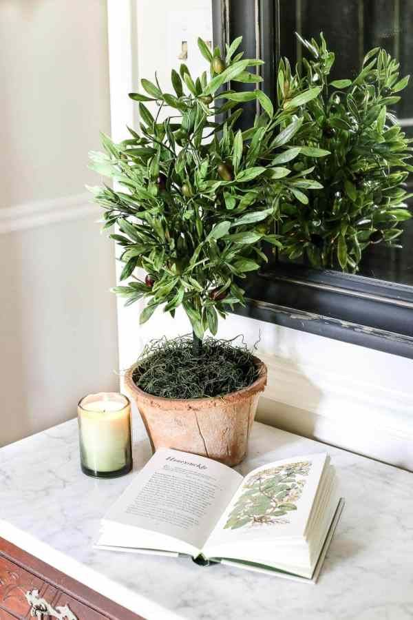 DIY Olive Topiary Trees | blesserhouse.com - A 10 minute craft tutorial for how to make an olive topiary tree (or any kind of topiary) inexpensively + 11 DIY summer decor ideas.