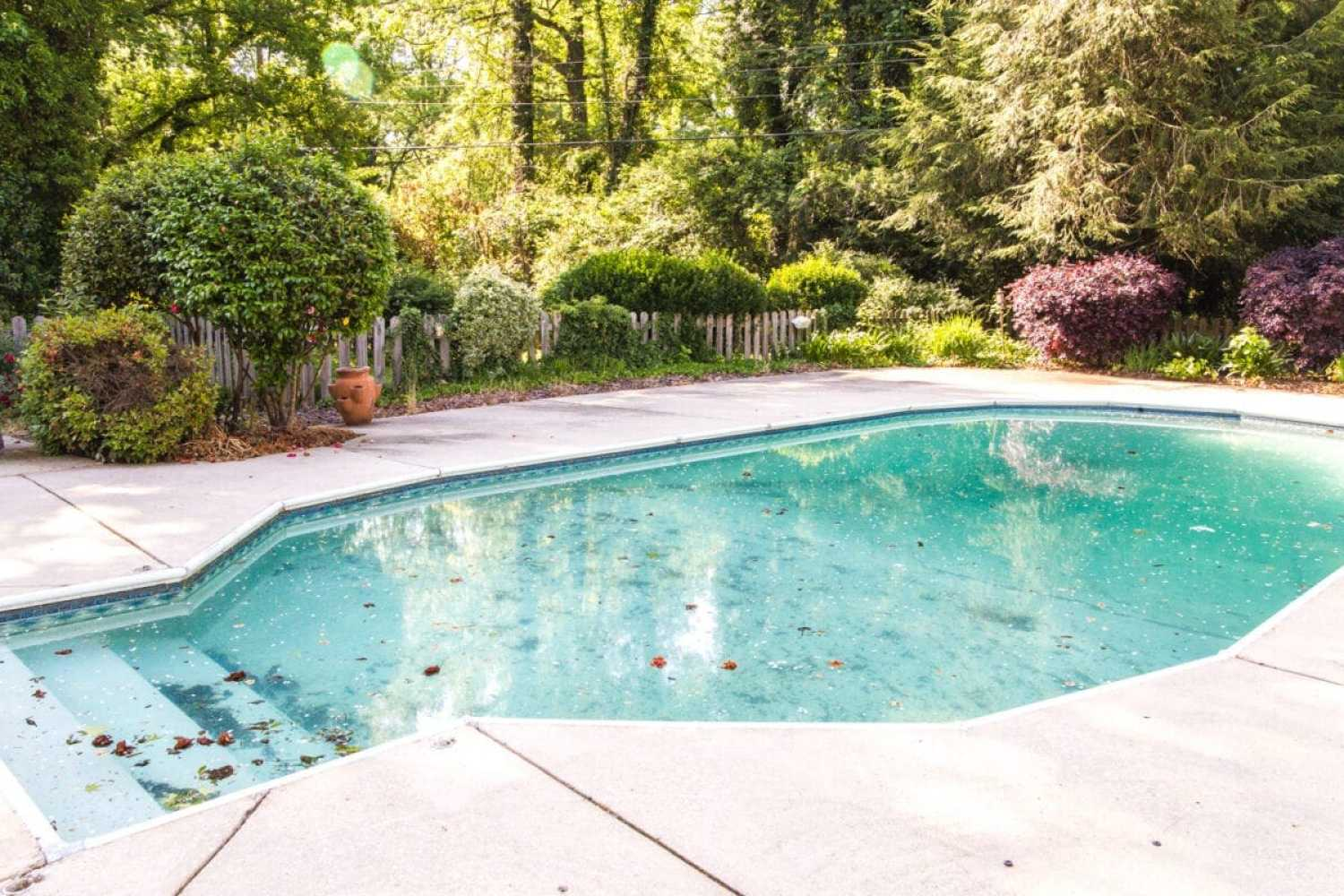 Backyard Before Tour and Pool Makeover Plans | blesserhouse.com - Ideas to improve an overgrown backyard and outdated pool