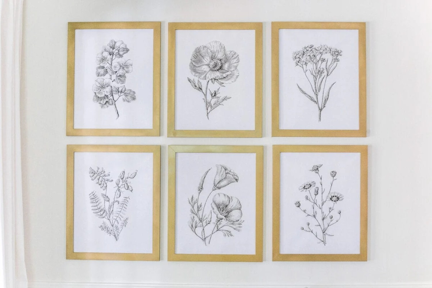 A free high resolution printable set of black and white modern minimalist botanical art and the best aged brass spray paint for frames.