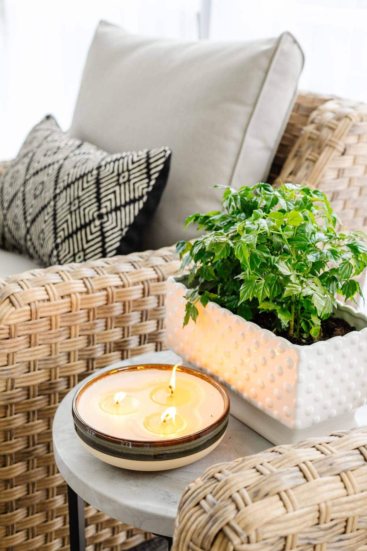 citronella candle and potted plant