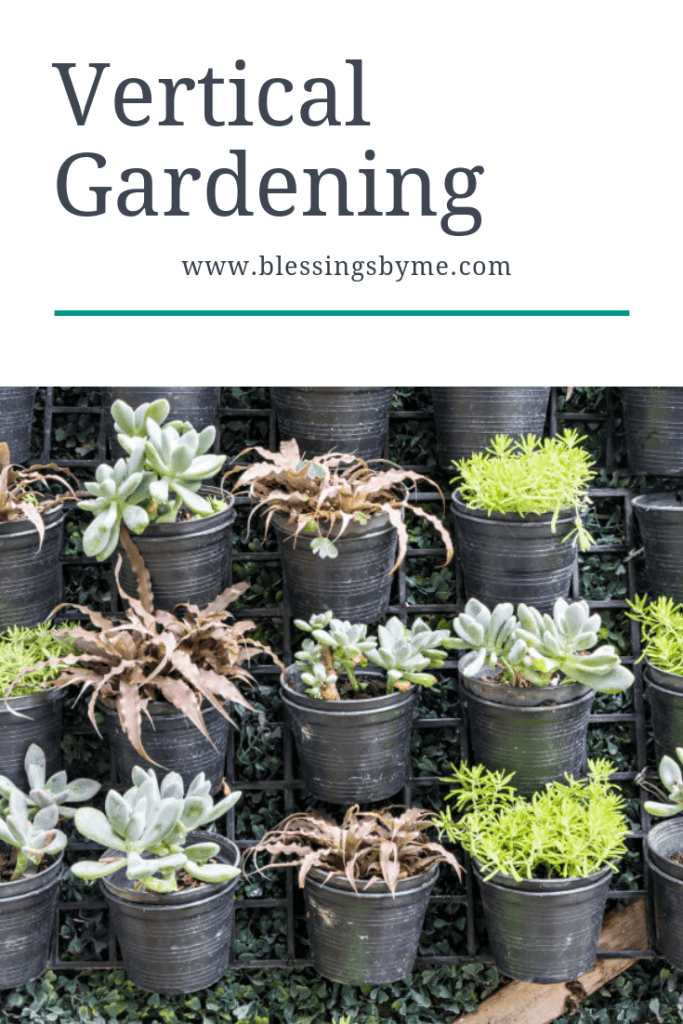 Vertical Gardening How To
