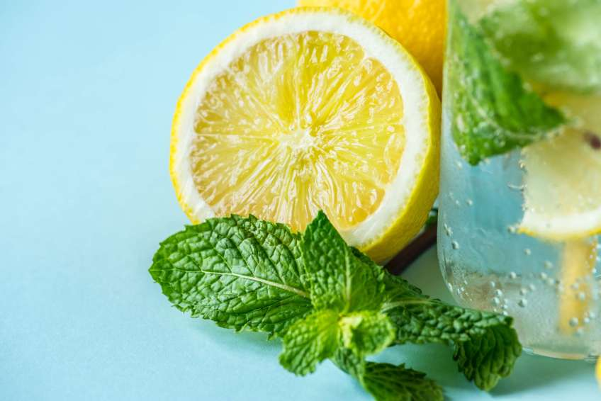 Planting and growing herbs - mint and lemon water