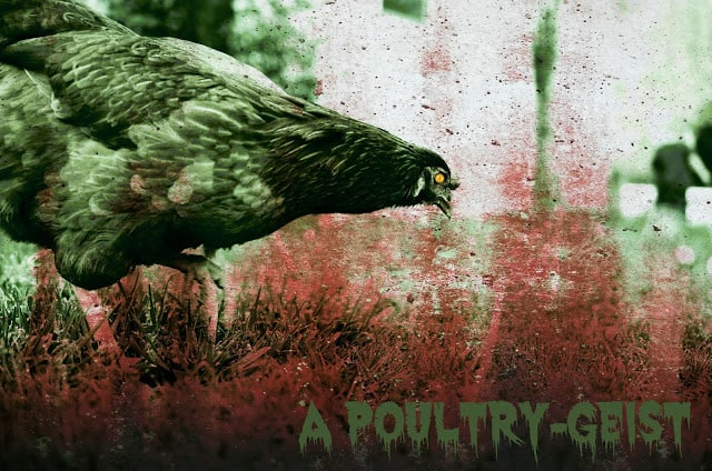 A spooky chicken with red background and the text A Pountry-Geist