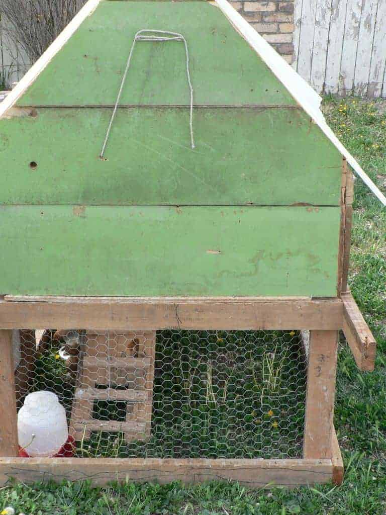 DIY Chicken coop, how to build a chicken coop, coop ideas for chickens
