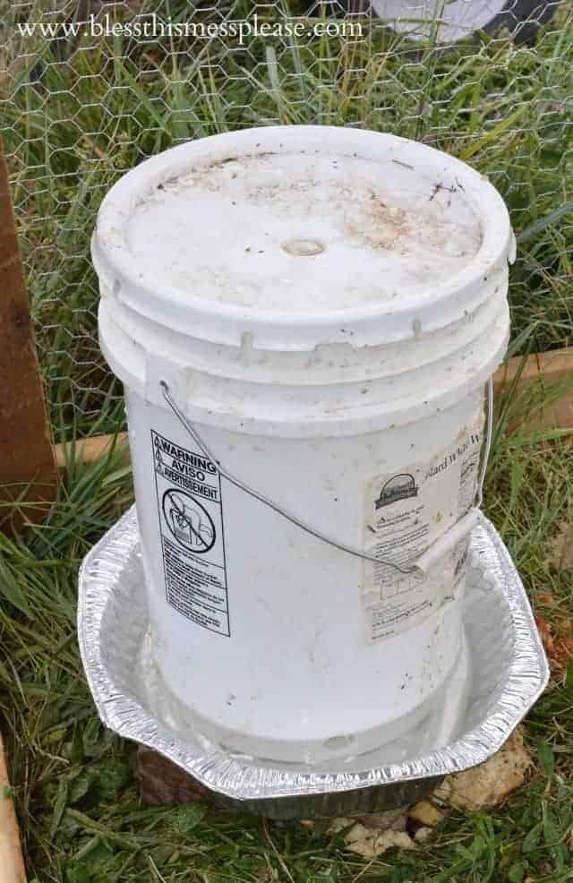 chicken water from 5 gallon bucket