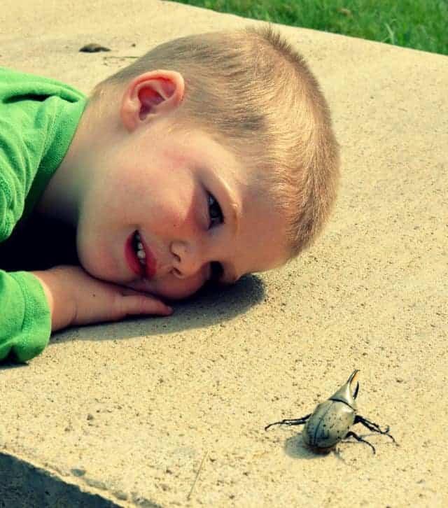 boyfriend and his bug