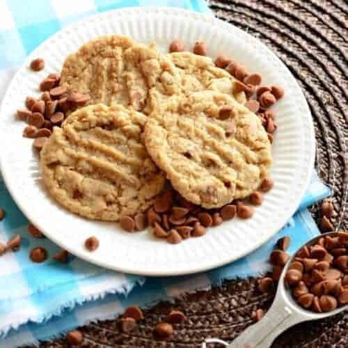 Oatmeal Cookies with Cinnamon Chips