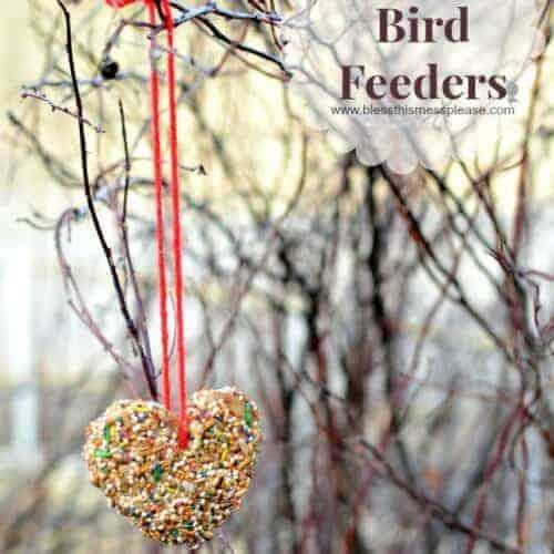 Simple DIY Bird Feeder