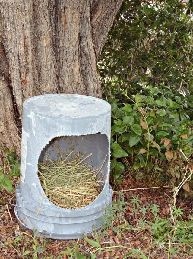 hobby farm chicken buckets
