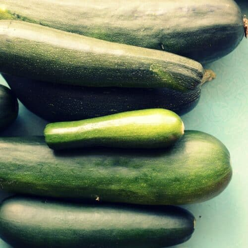 Ingredient Spotlight: Summer Squashes (or skwarsh if you are my grandma)