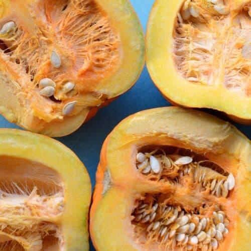 Ingredient Spotlight: Pumpkin