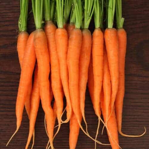 Ingredient Spotlight: Carrots
