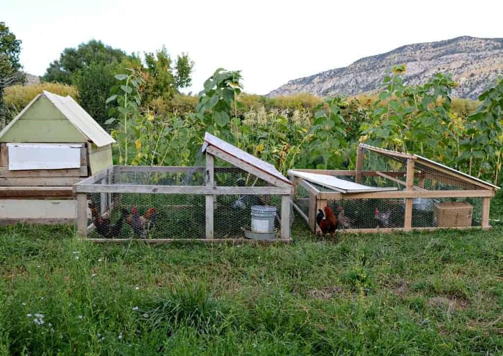 farm 2015