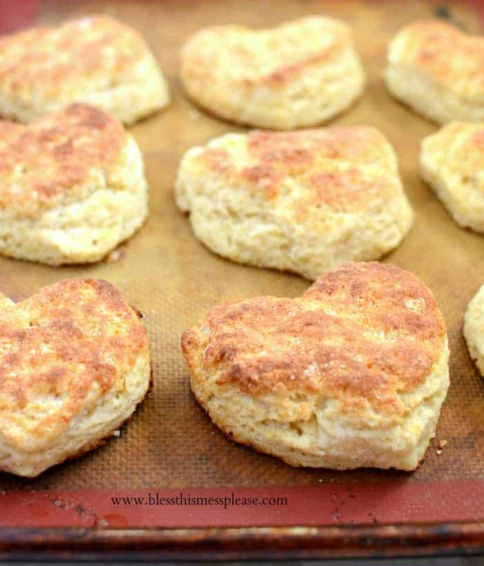 This tried and true recipe for Basic Biscuits is the last you'll ever need because they are buttery fluffy perfection that turn out every time.