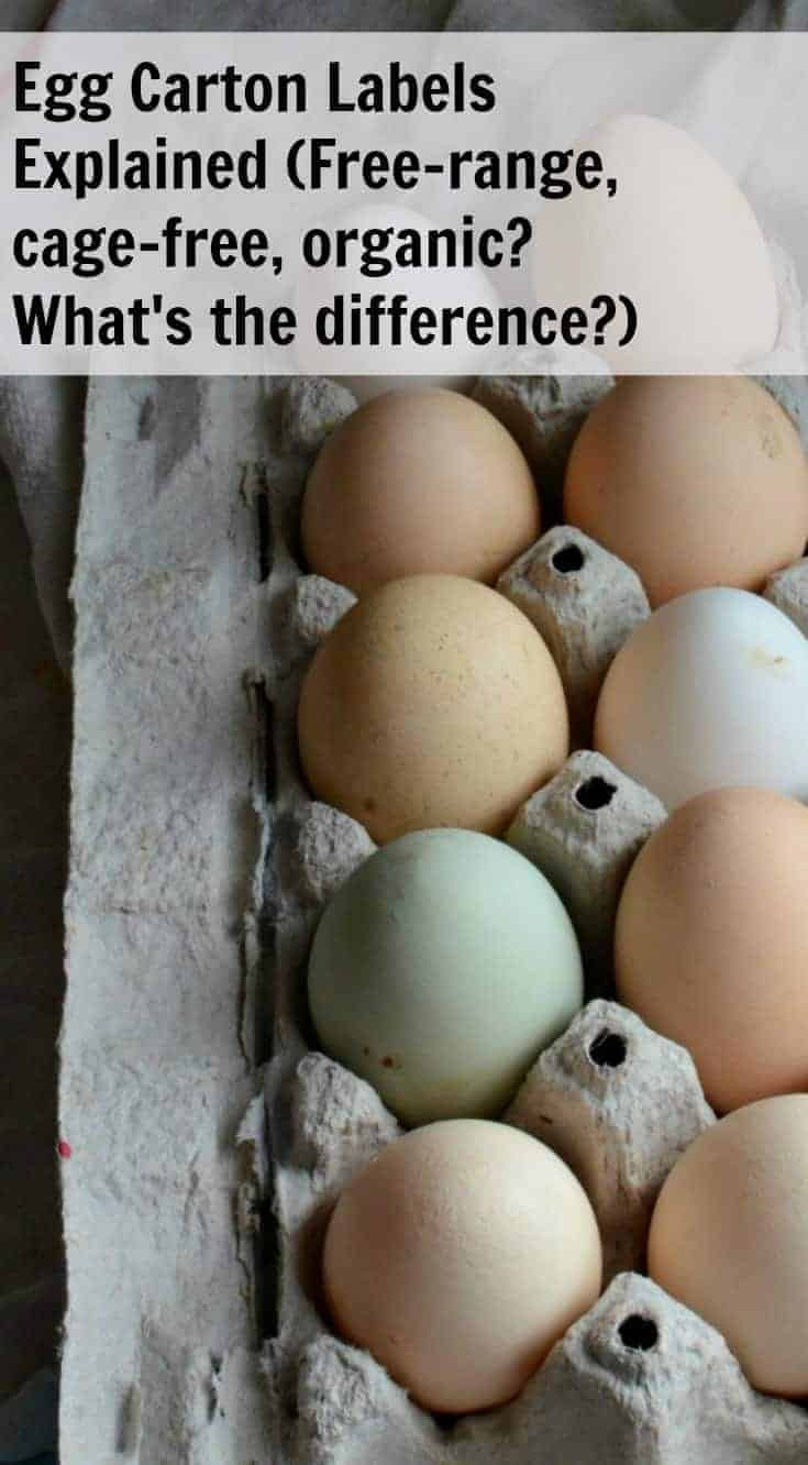 Ever wonder what all the different terms on the egg carton labelsmean? Egg Carton Labels Explained will explain the terms, and help you know what store-bought eggs are the best to buy!