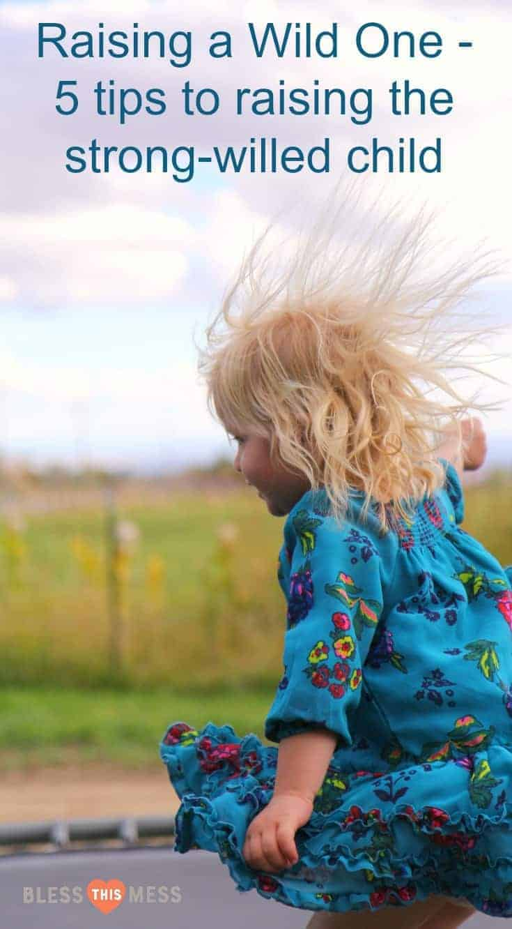 Raising a wild one - 5 tips to raising the strong willed child