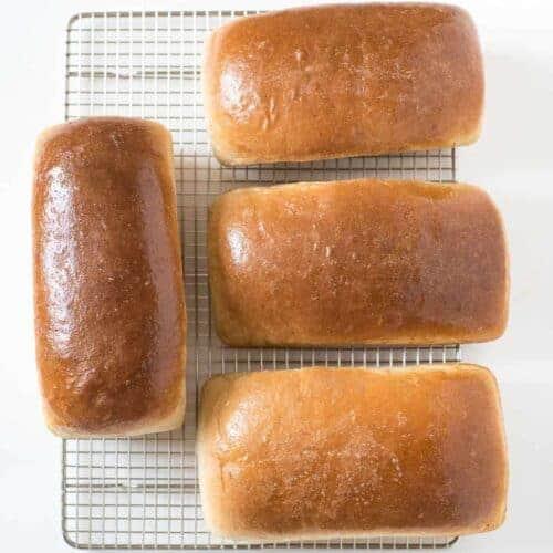 Mom's 4 Loaf Wheat Bread Recipe