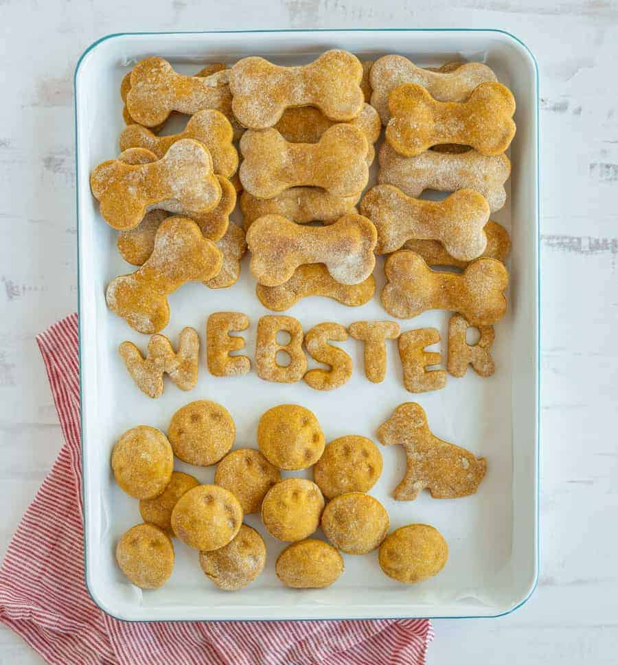 This easy pumpkin dog treat recipe contains four simple ingredients that are good for your pup and that he or she will love to chow down! #pumpkindogtreat #homemadedogtreat #dogtreat #dogtreatrecipe