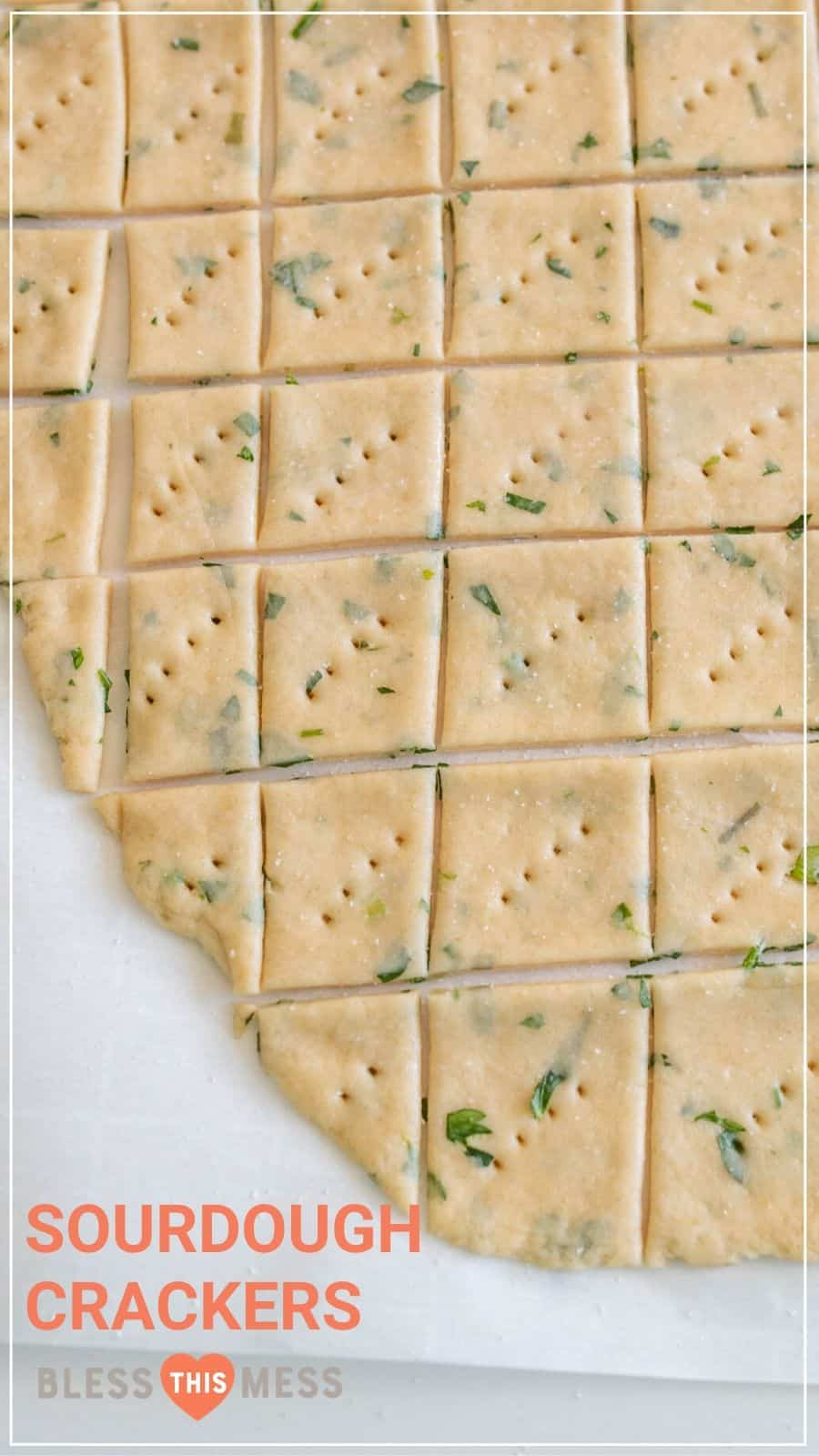 herb and garlic sour dough crackers before baking