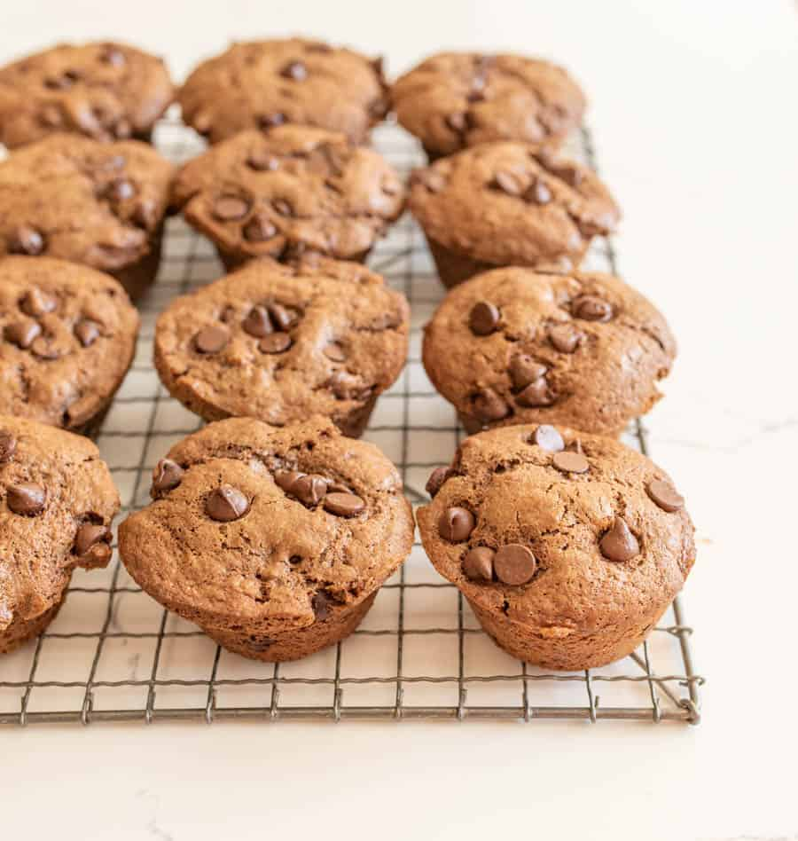 chocolate sourdough muffins with chocolate chips on top