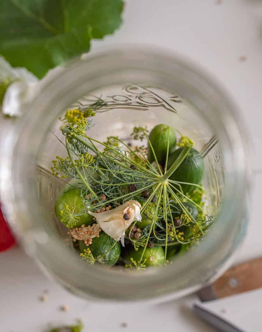 inside jar with pickles and spices showing