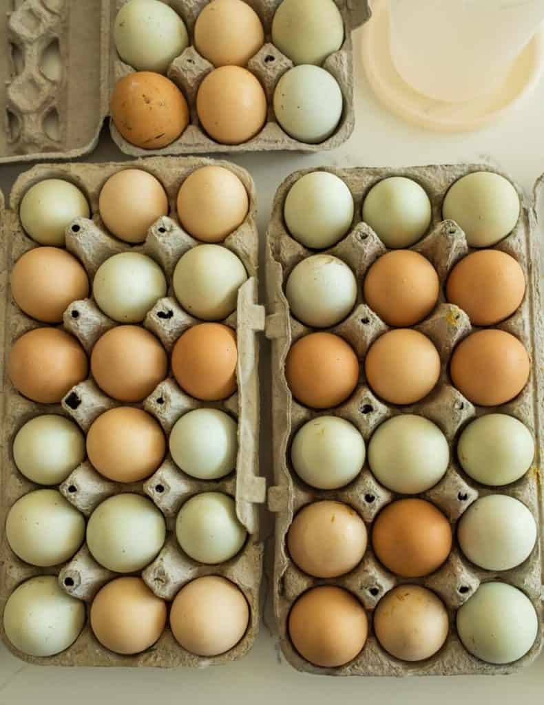 colorful eggs in cartons