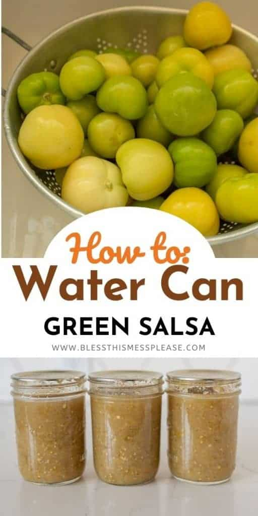 how to can salsa photo collage pin with words