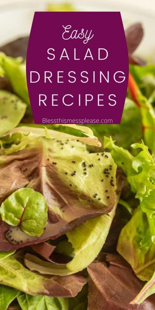 """picture of leafy greens with salad dressing on it with the words """"easy salad dressing recipes"""" written on the top"""