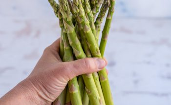 hand holding a bunch of asparagus