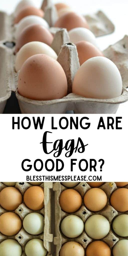 """Top picture is a close up of a carton of eggs, bottom picture is the top view of eggs in cartons, with the words """"how long are eggs good for"""" written in the middle"""