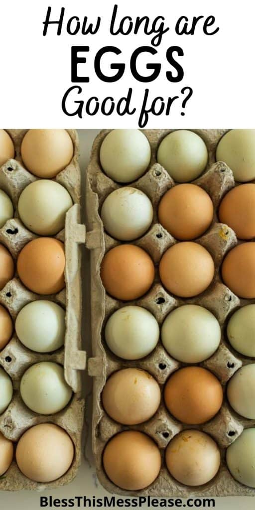 """top view of eggs in cartons with the words """"how long are eggs good for"""" written at the top"""