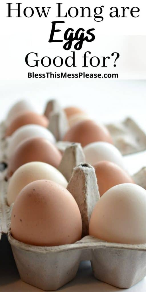 Close up picture of a carton of eggs