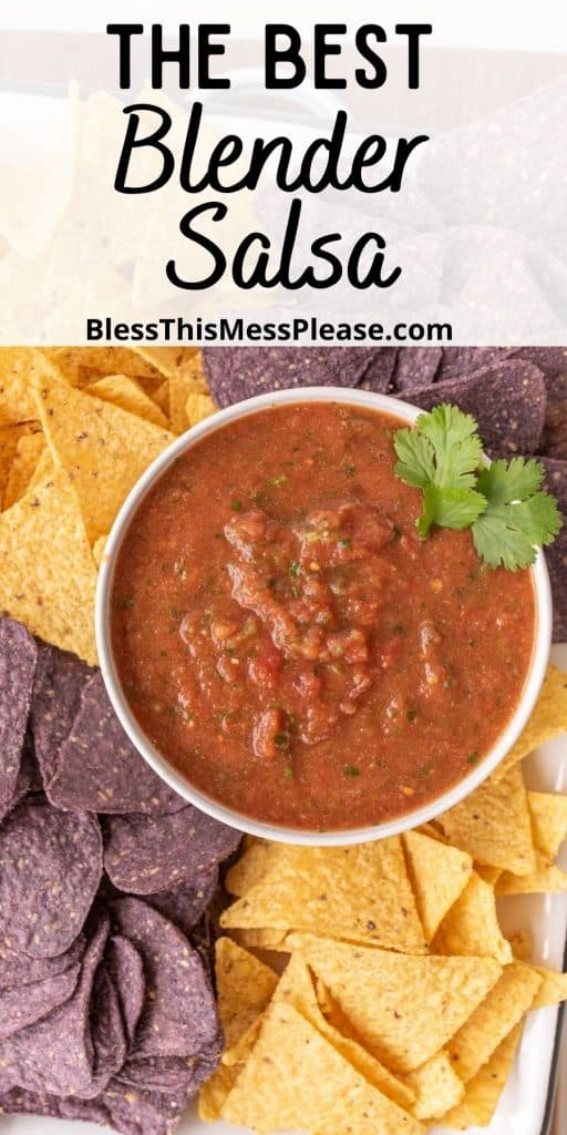 """top view of a bowl of salsa surrounded by tortilla chips and the words """"the best blender salsa"""" written at the top"""