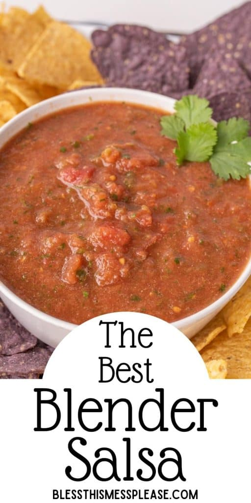 """bowl of salsa with tortilla chips surrounding it and the words """"the best blender salsa"""" written at the bottom"""