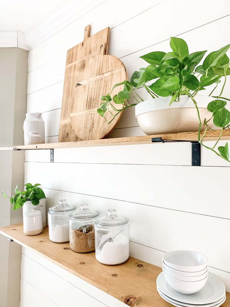 wood shelves on shiplap wall with pothos in bowl