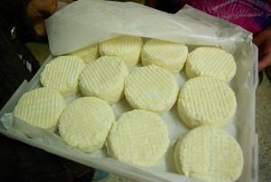 Les fromages de brebis sont ultra-frais