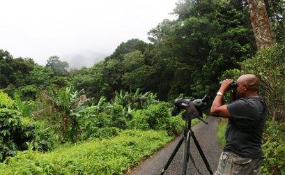Développer le tourisme durable
