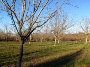 Terre de Liens et la ferme des Gavottes